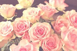 dans-på-roser