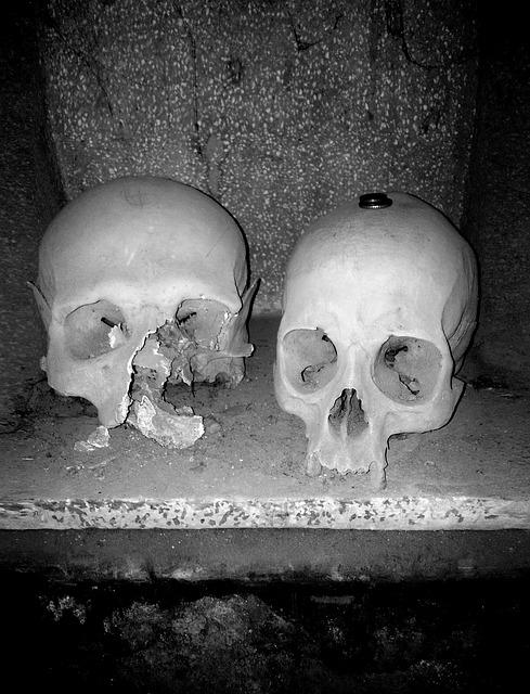 skull-775162_640