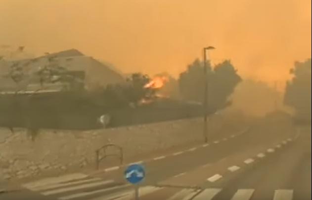 skogbrann-israel